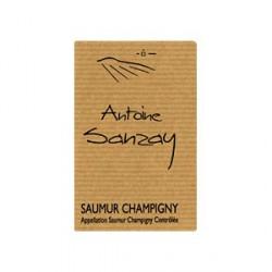saumur champigny 2014 antoine sanzay