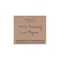 saumur champigny 2013 les poyeux antoine sanzay