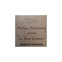saumur champigny 2014 la haye dampierre antoine sanzay