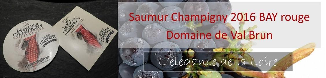 saumur champigny bay 2016